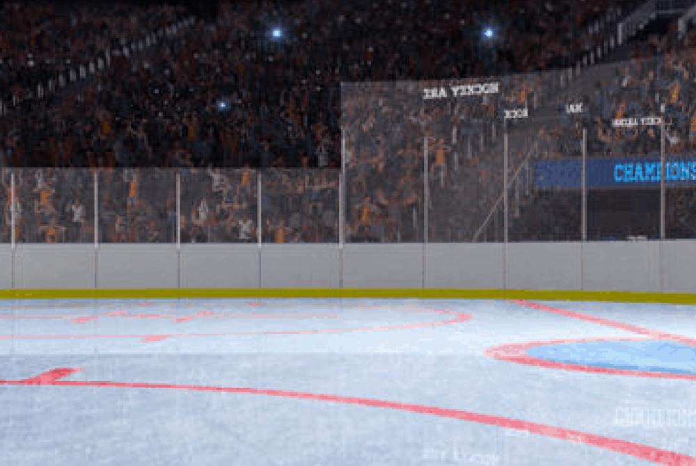 Ice-Rinks-Leisure